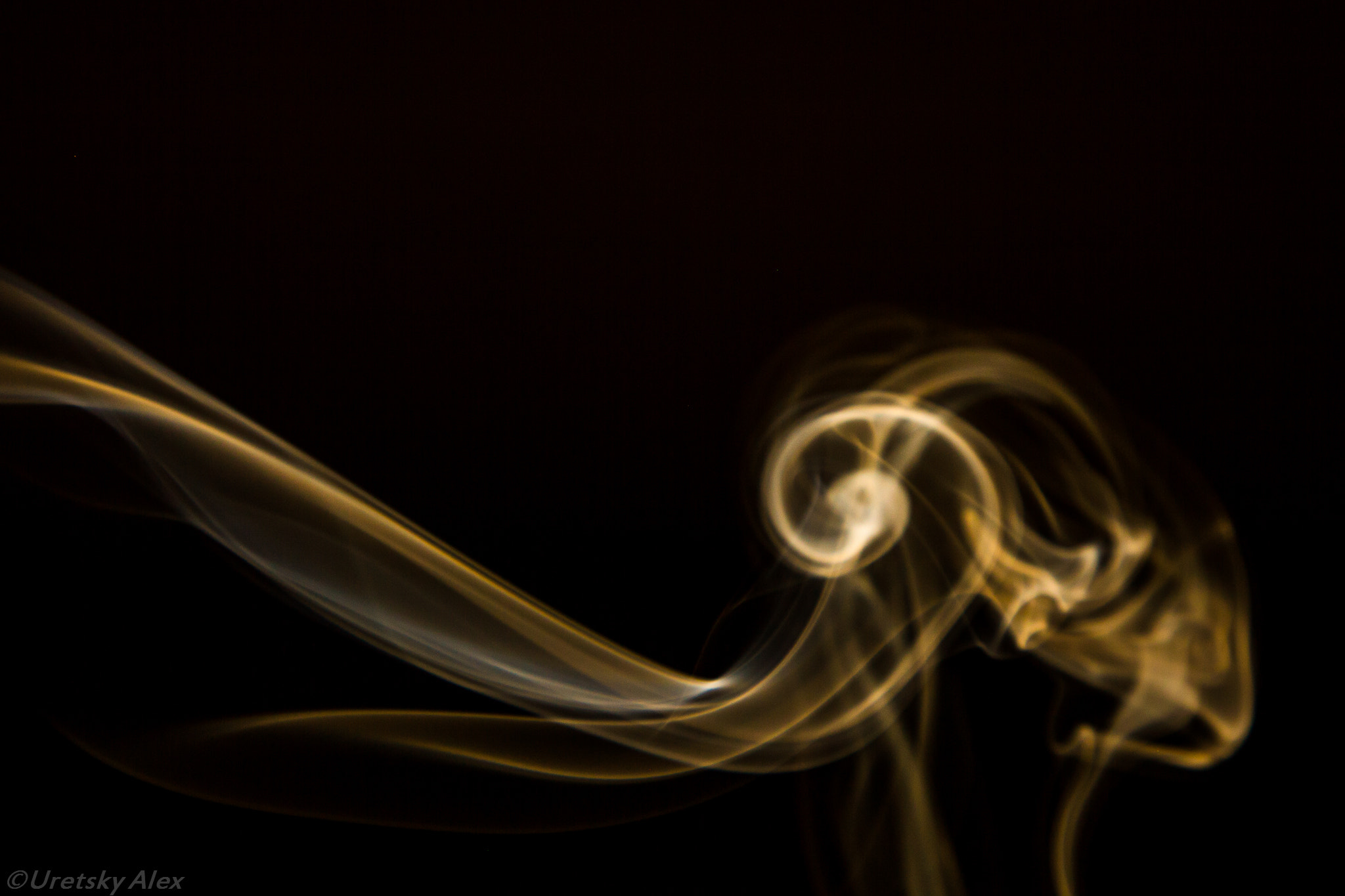 Photograph Smoking Goat by Alex Uretsky on 500px