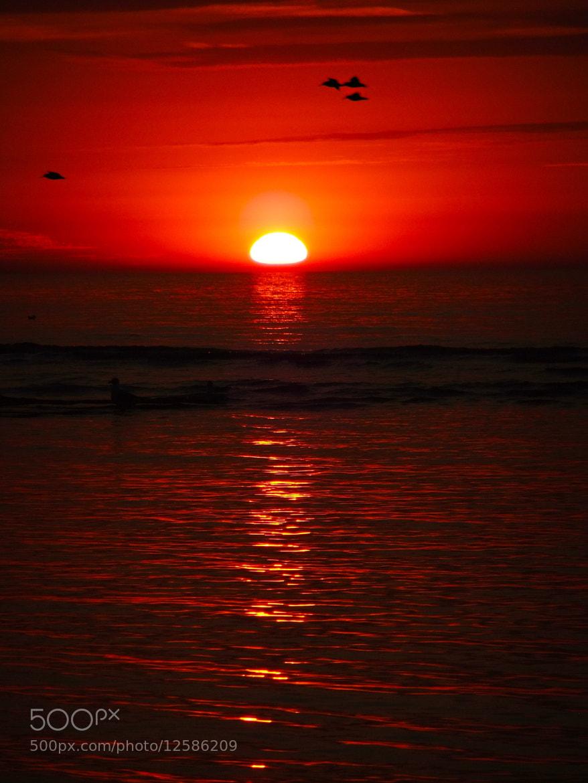Photograph Sunset by Ann Vdb on 500px