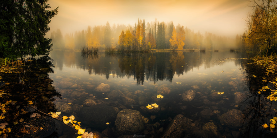 Transparent Mirror III by Lauri Lohi on 500px.com