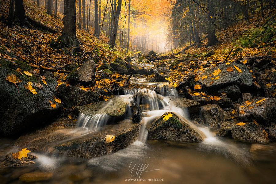 Realm of Illusion by Stefan Hefele on 500px.com