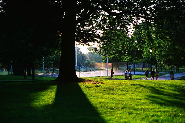 Photograph the boston common by Suniko B on 500px