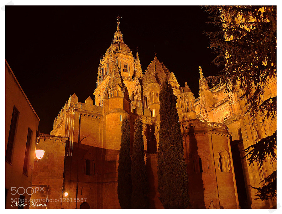 Photograph Catedral noche. by Noelia Martín on 500px