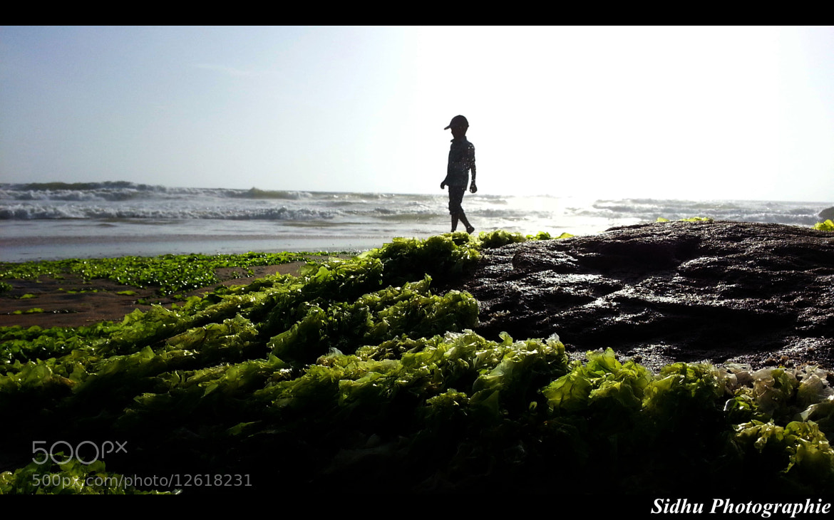 Photograph Untitled by Arun Siddharth on 500px