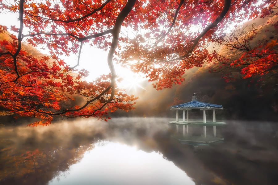 Awakening Pavilion by jae youn ,Ryu on 500px.com