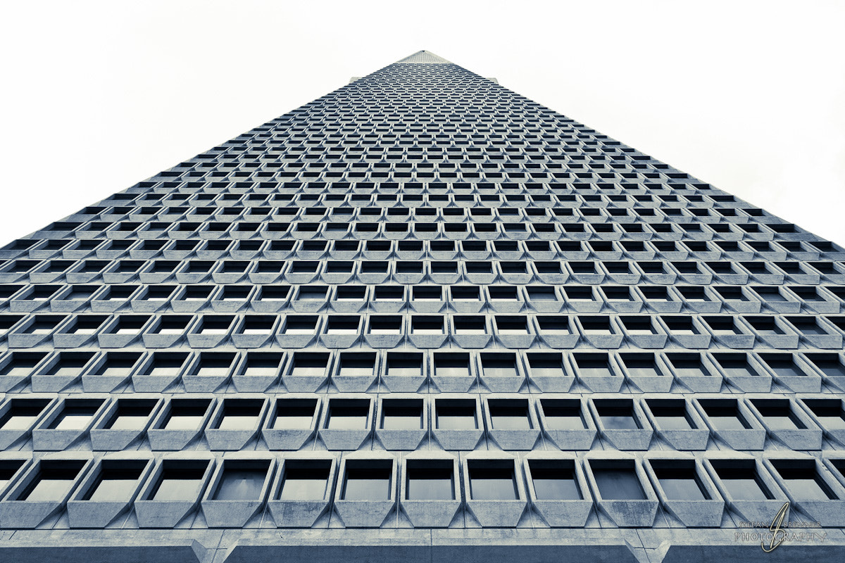 Photograph Transamerica Pyramide by Stefan Brenner on 500px