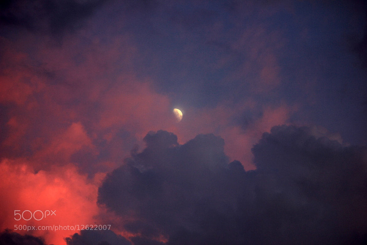 Photograph Rising Moon by Juanma Reyes on 500px