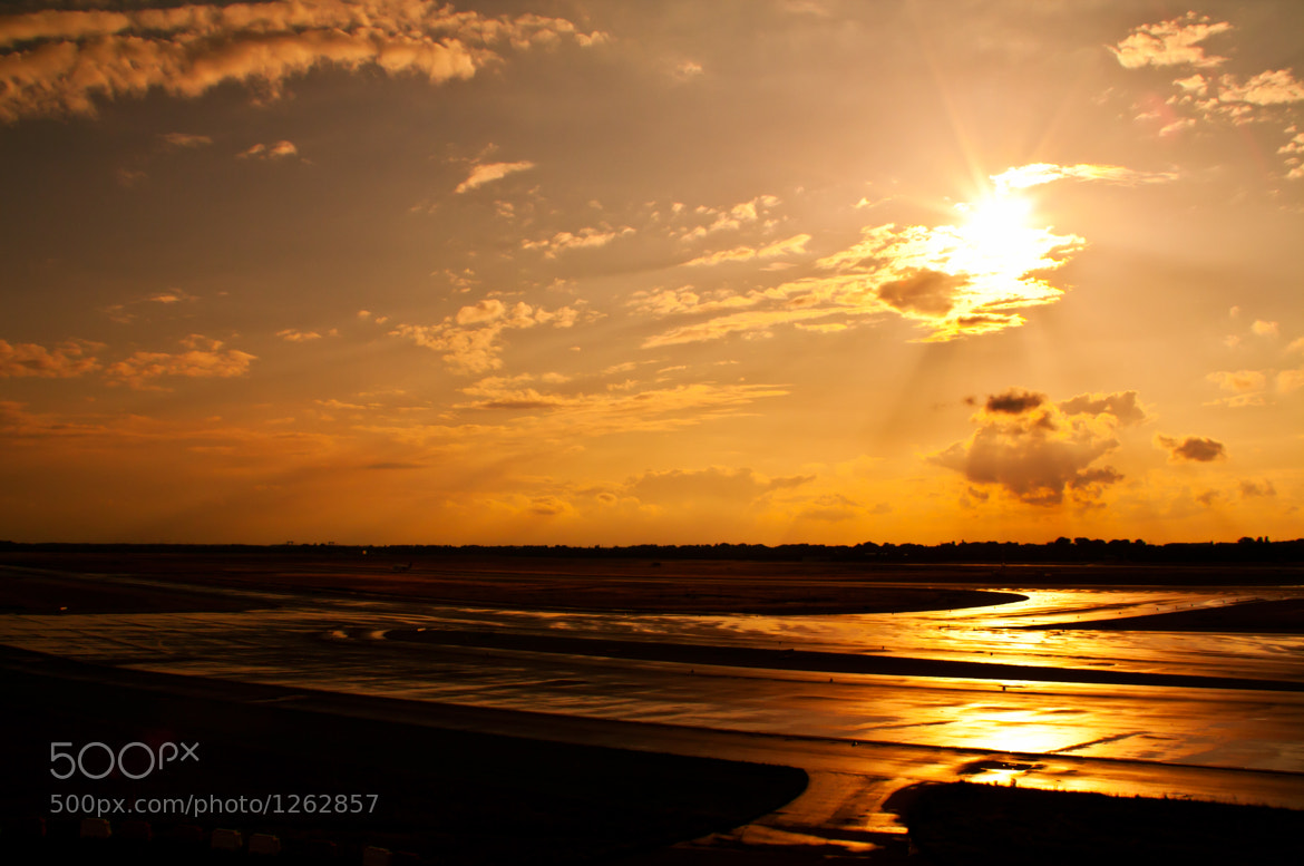 Photograph Runway got horny by Jan W on 500px