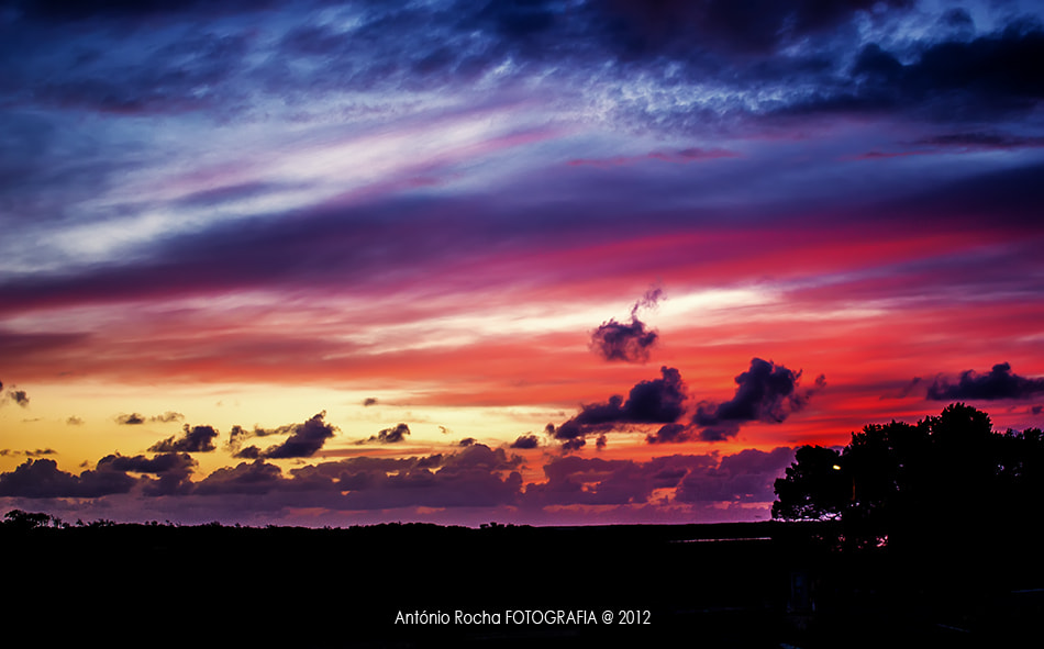 Photograph Sunset by António Rocha on 500px