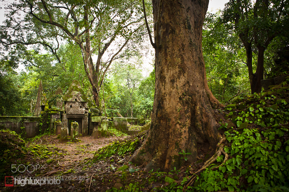 Photograph Forgotten Temple by Mark Watson on 500px