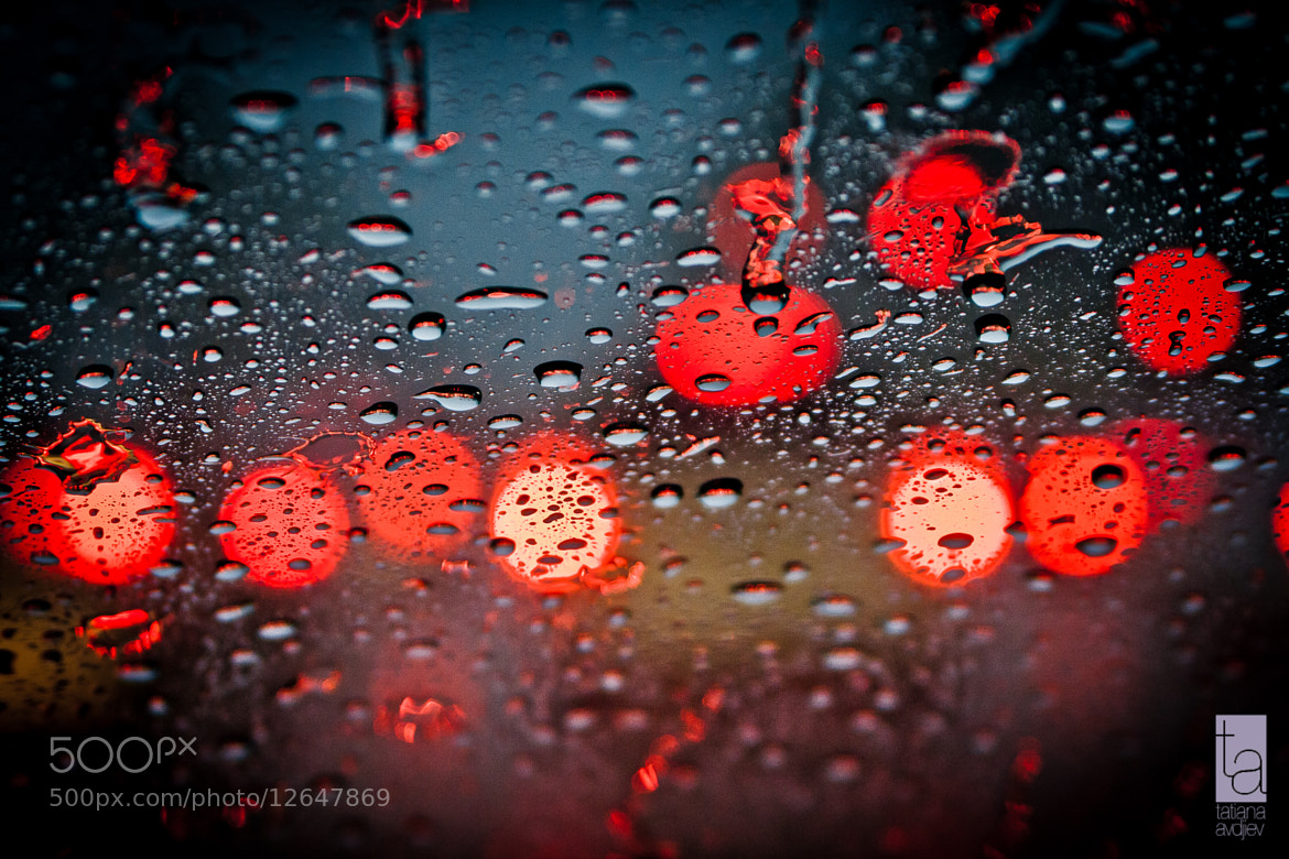 Photograph Stop the rain by Tatiana Avdjiev on 500px
