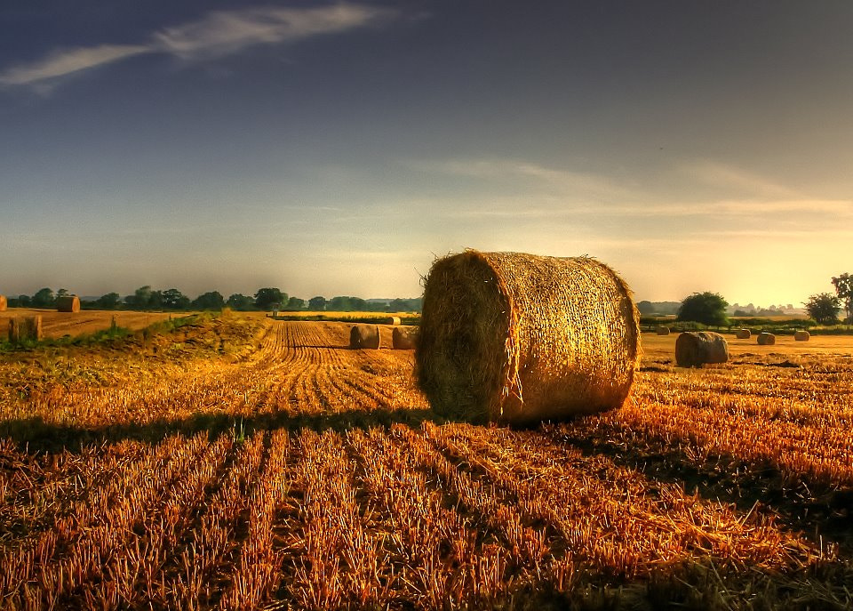 Photograph Making Hay by Garry Atkinson on 500px