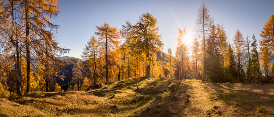 Autumn in the Mountains by Gerald Köstl on 500px.com