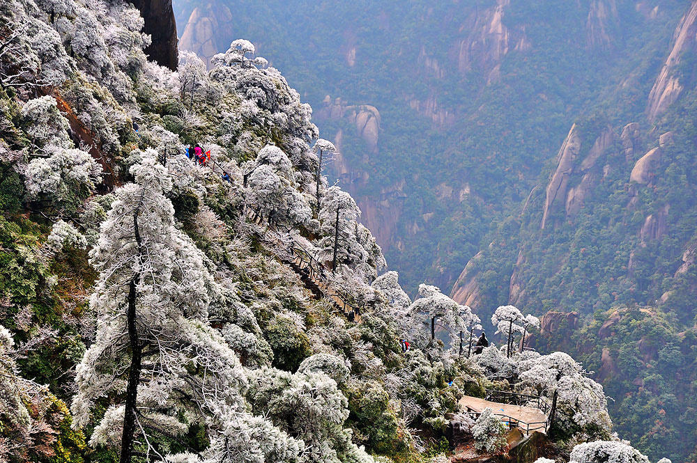 Photograph hilly : San Qing Mountain by Jumrus Leartcharoenyong on 500px