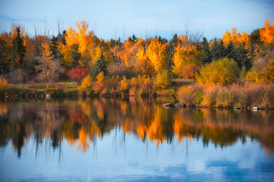 Seasonal Reflection by Ian McGregor on 500px.com