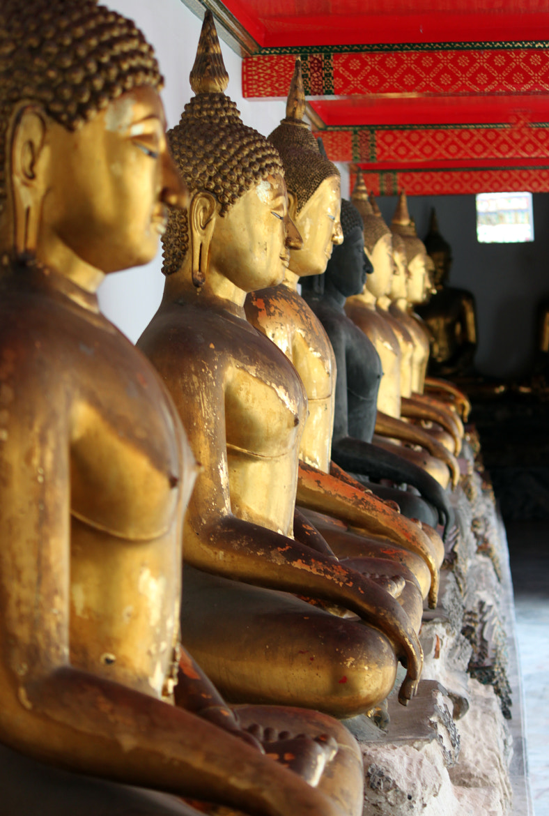 Photograph Row of buddha statues by Denise van Rijswijk on 500px