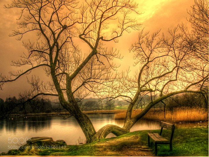 Photograph The magic place. by Garry Atkinson on 500px