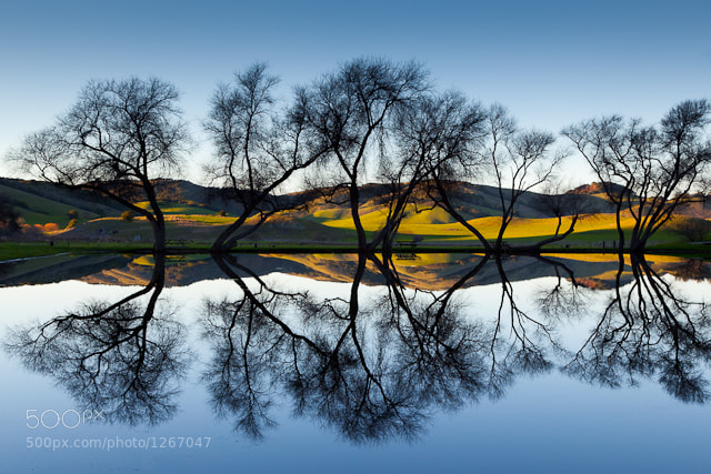 Photograph Double Exposure by Larry McCloskey on 500px