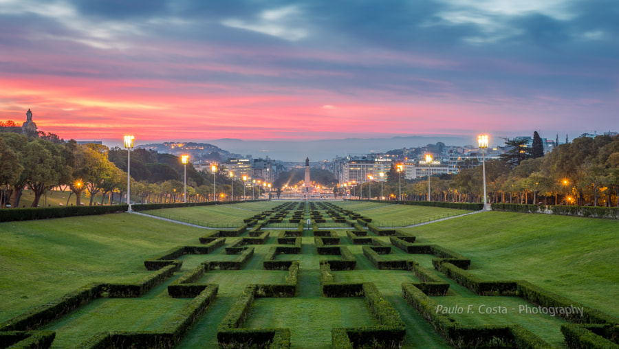 Sunrise over the Park by Paulo Costa on 500px.com
