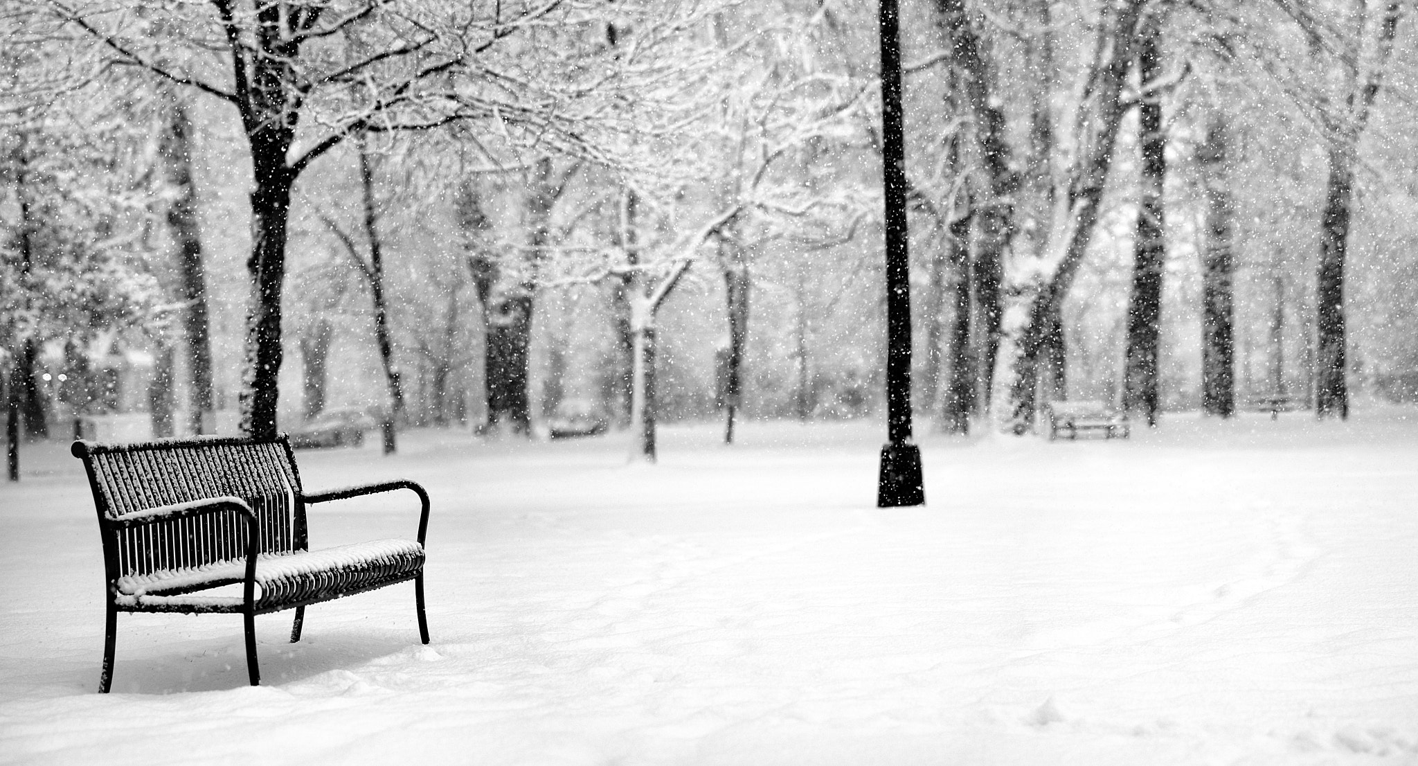 Photograph Solitude by Chad Galloway on 500px