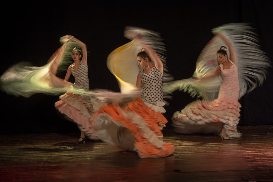 Motion Flamenco