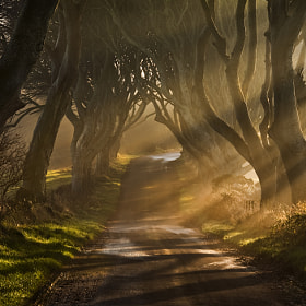 The Road Goes Ever On & On by Gary McParland (garymcparland)) on 500px.com
