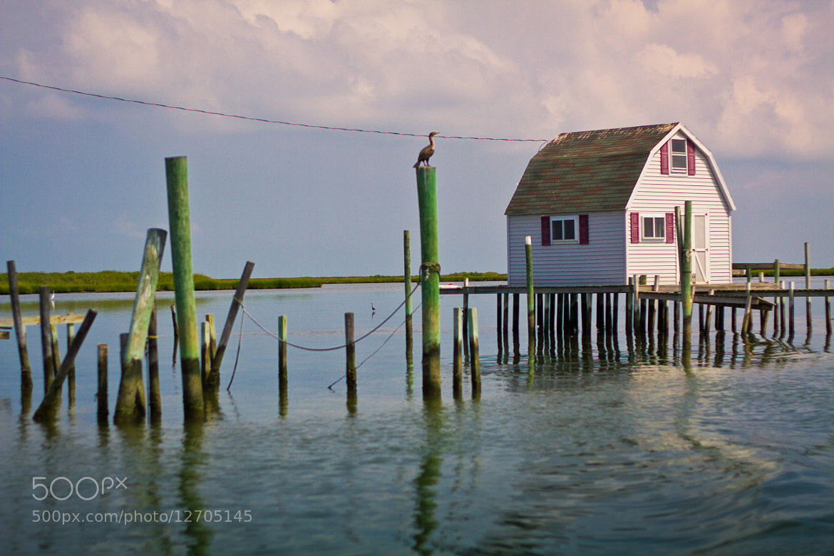 Photograph Tangier Island Crabbing Shack by Kelsey Freeman on 500px