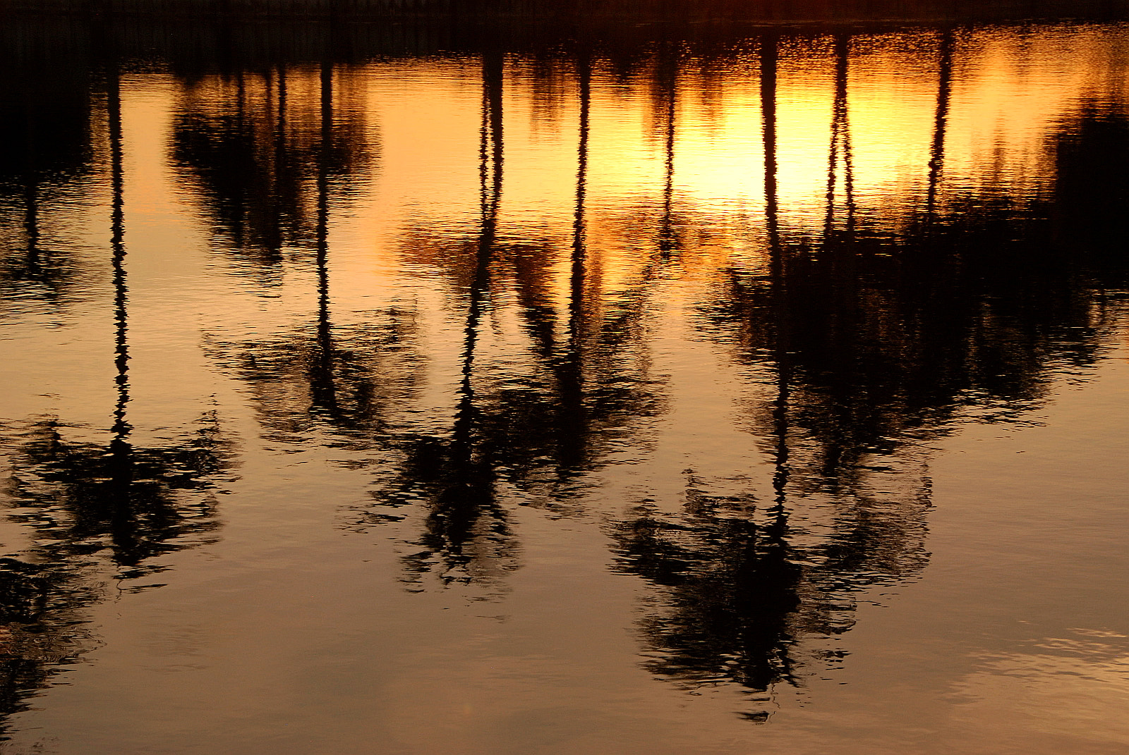 Photograph Evening Shadows by Lorenzo Cassina on 500px