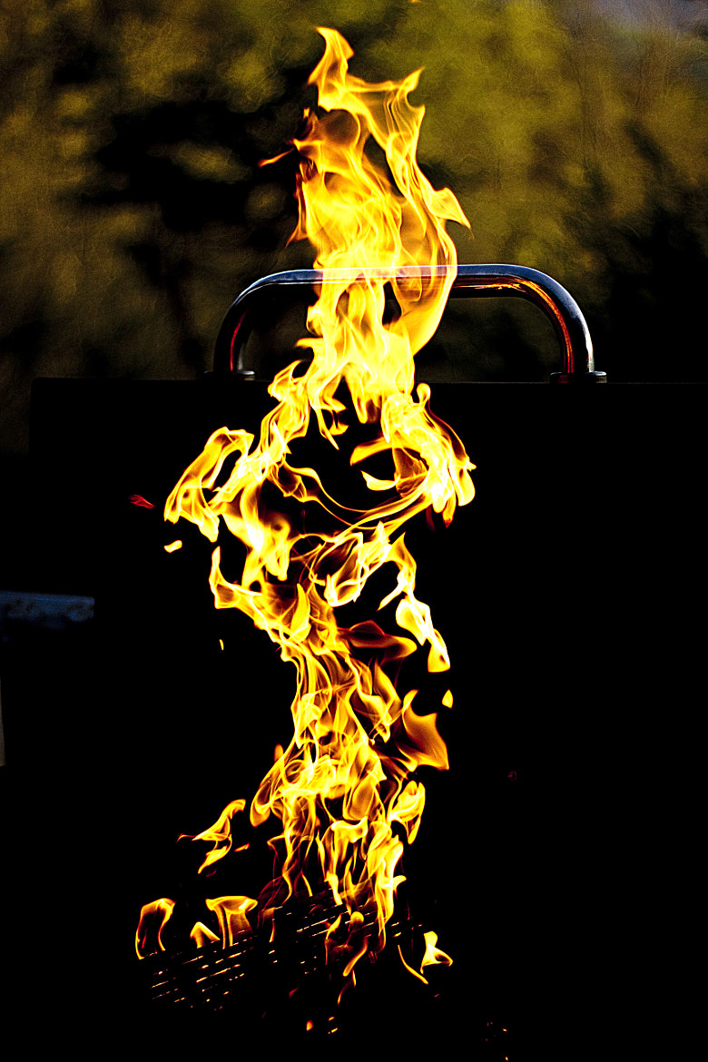 Photograph The flames by R Long on 500px