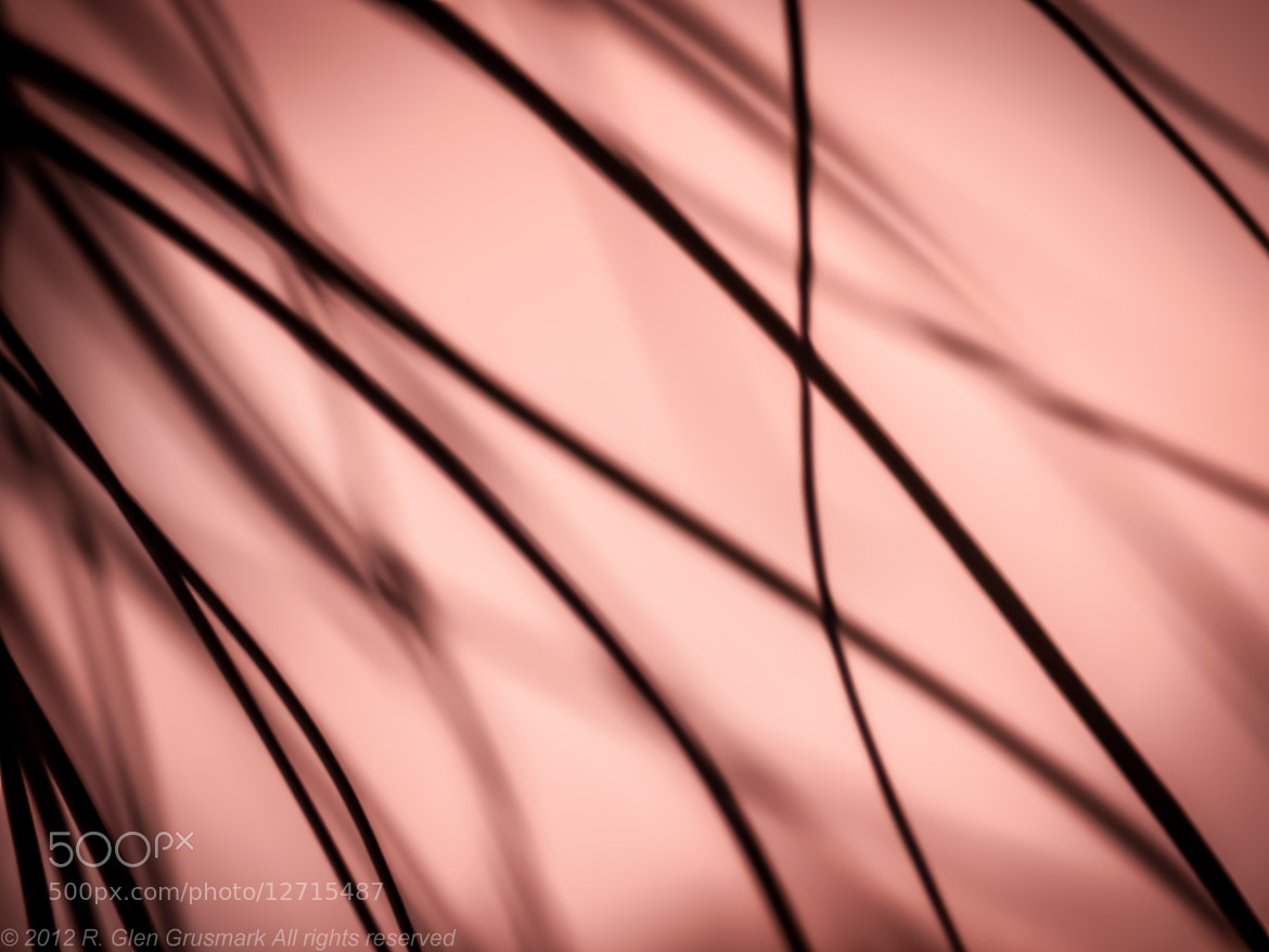 Photograph Abstract by R. Glen Grusmark on 500px