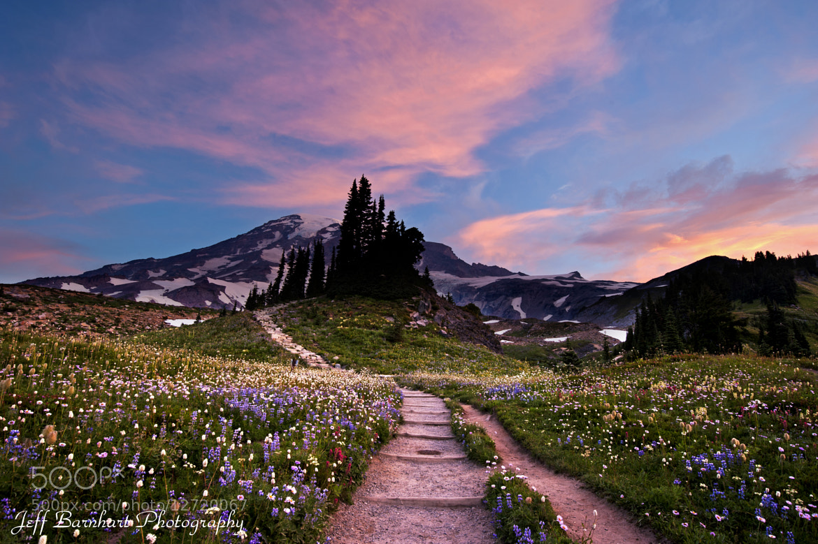 Photograph To Narnia by Jeff Barnhart on 500px