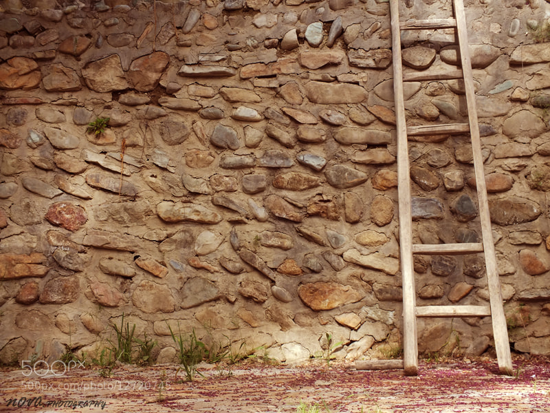 Photograph A ladder with 5 steps by Mahan Farshi on 500px