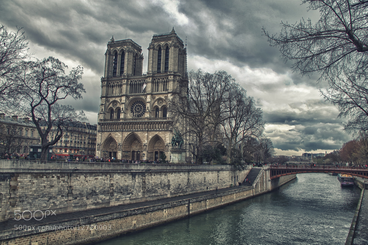 Photograph notre dame by Dennis Gonzalez on 500px
