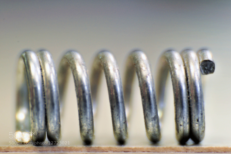 Photograph molla di una penna... by eddy magri on 500px