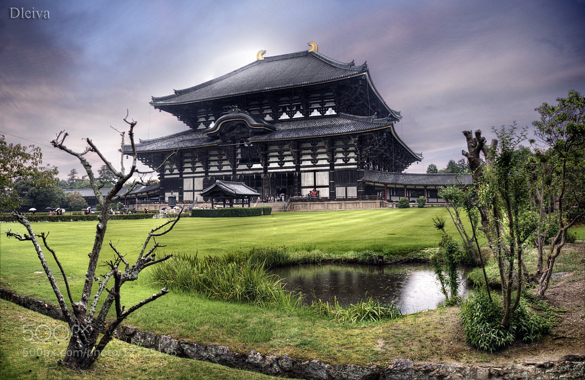 Photograph Todaiji temple (Nara, Japan) by Domingo Leiva on 500px
