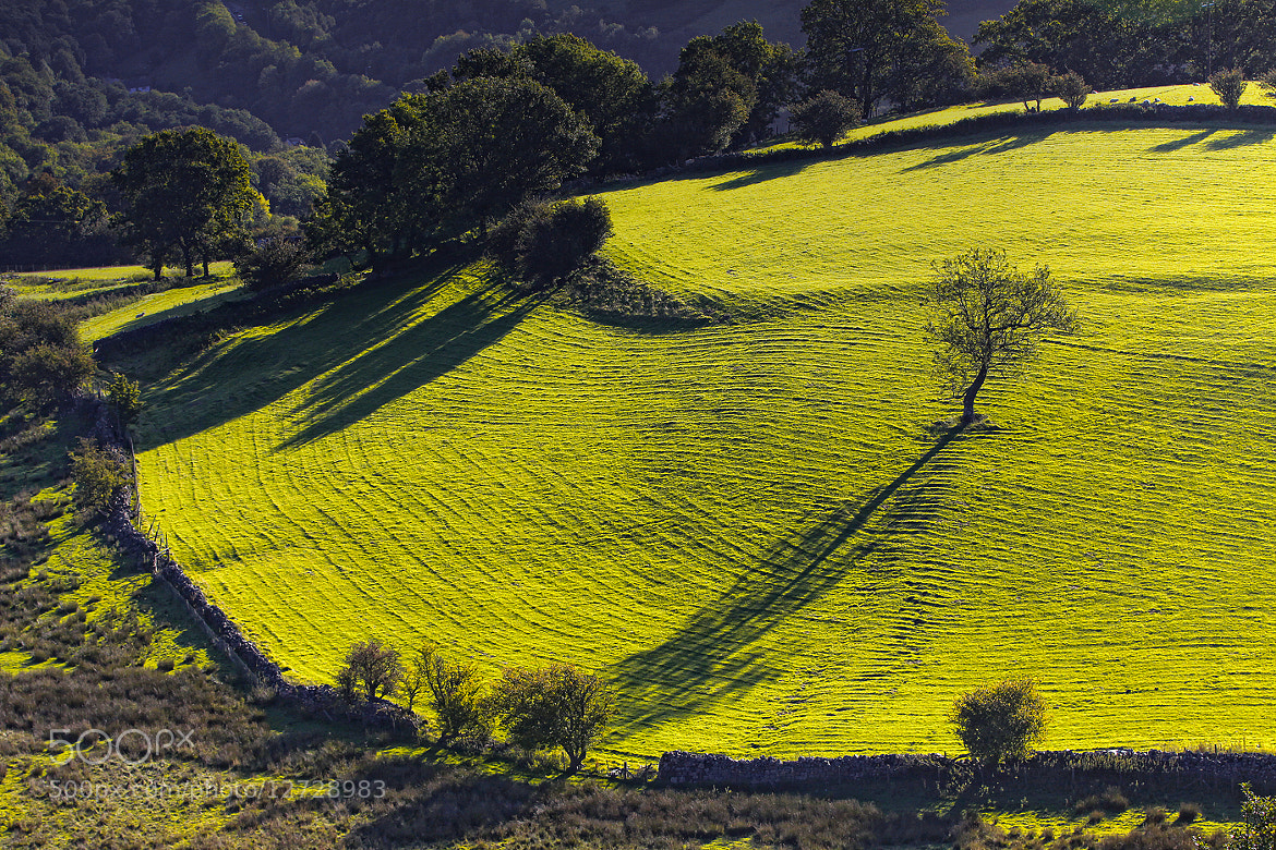 Photograph Long Shadow by Alan Coles on 500px
