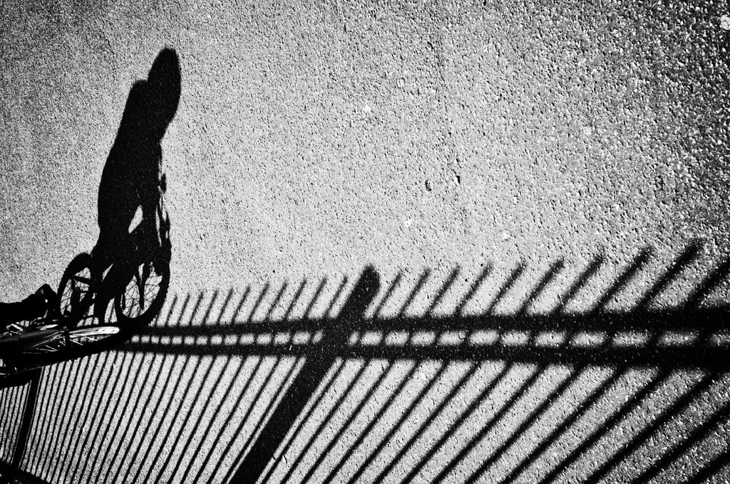Photograph The Cyclist by David Mar Quinto on 500px