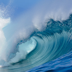 The perfect wave Teahupoo, tahitian island by Brest Report Stéphane (photograsteph)) on 500px.com
