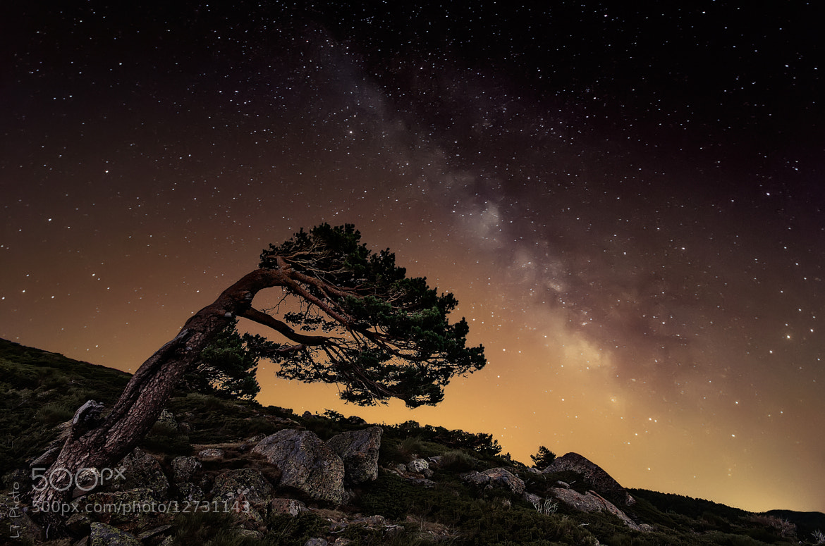 Photograph Wind of Stars by Javier de la Torre on 500px