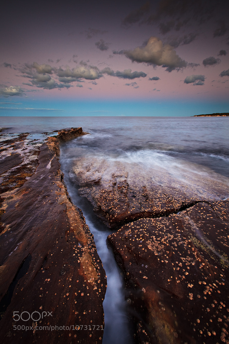 Photograph To the Point by Xenedis  on 500px