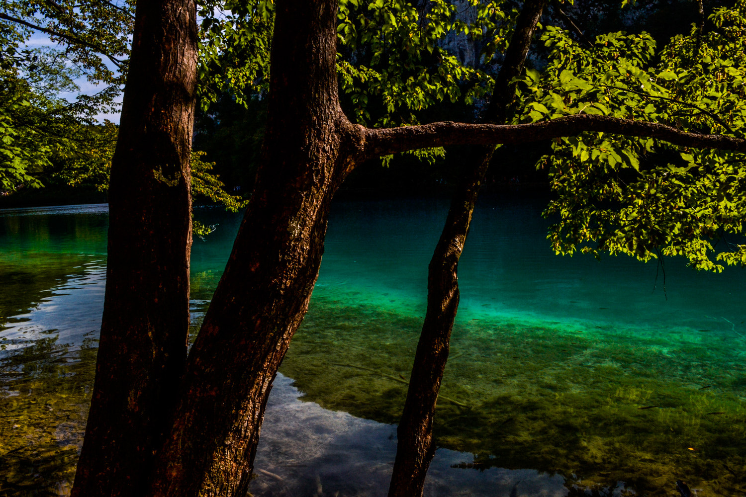 Photograph Croatia, Plitvice lakes. by LH Padovan on 500px
