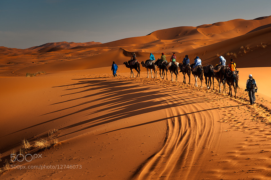 Photograph Desert by Оля Грачева on 500px
