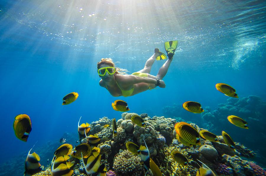 underwater #7 by elovich on 500px.com