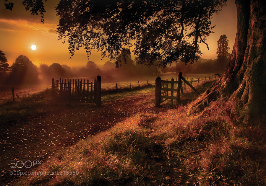 Photograph Autumn Sunrise by Gary McParland on 500px