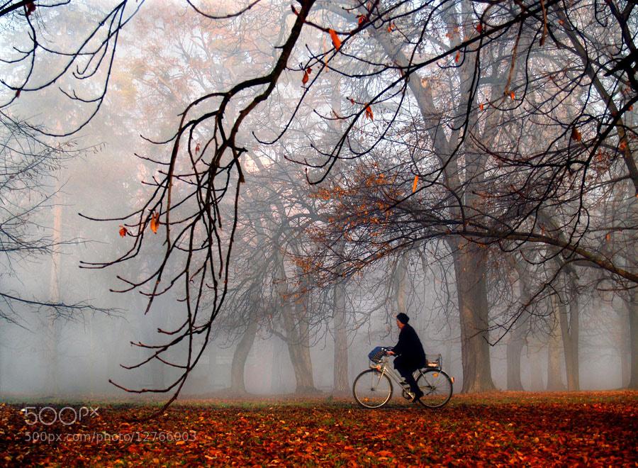 Photograph MORNING COLOURS by Jasmina Gorjanski on 500px