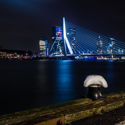 Erasmus Bridge at Night
