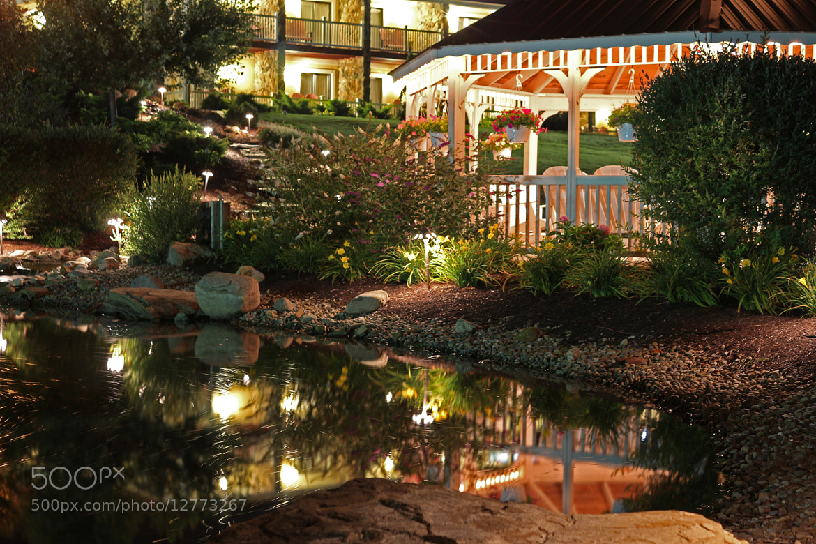 Photograph Garden (long exposure) by Steve M DiPolito Imaging on 500px