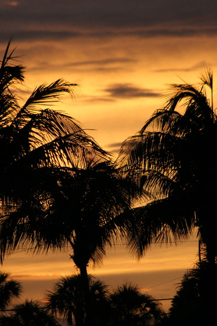Photograph Florida Sunset by Mark Coffman on 500px