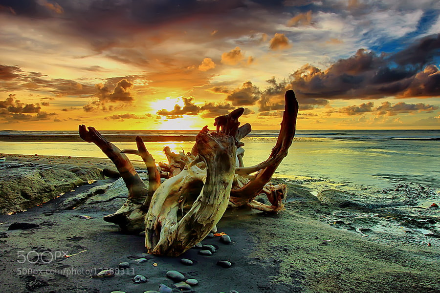 Photograph  Cast Away by Agoes Antara on 500px