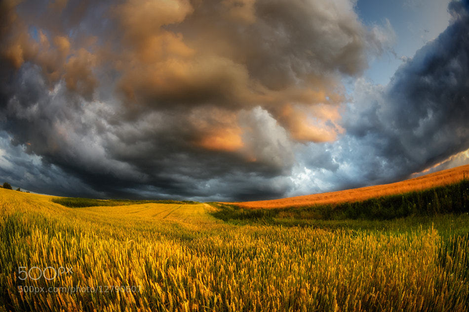 Photograph fields of storm by Piotr Krol on 500px