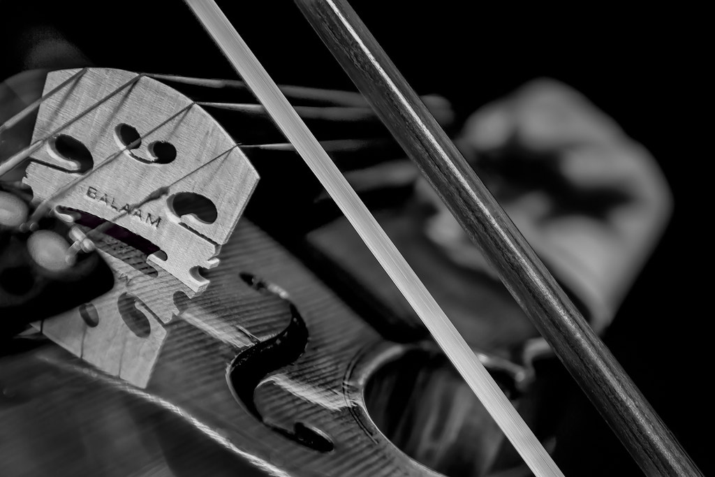 Photograph Violin by Richard Wilson on 500px
